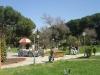 Tirana park